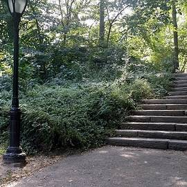 Rob Hans - Central Park Lamp Stairs 2015
