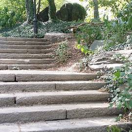 Rob Hans - Central Park Stairs 2015