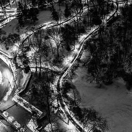 M G Whittingham - Central Park Trails