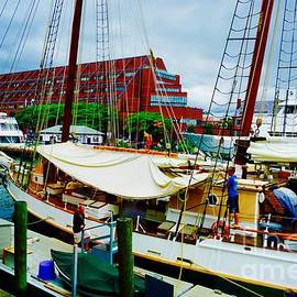 Jasmin Hrnjic - Central Wharf