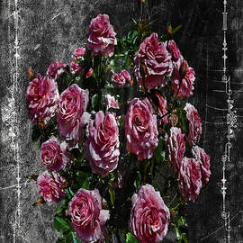 Marvin C Brown - Chalkboard Roses
