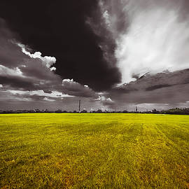 Michelle Saraswati - Chalmette Battlefield
