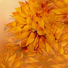 Jacquie King - Changing of the Leaves