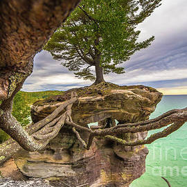 Norris Seward - Chapel Rock  With Strong Roots You Can Do Anything
