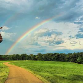 Jai Johnson - Chasing Rainbows Bald Eagle Art by Jai Johnson