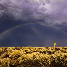 Saija  Lehtonen - Chasing The Desert Rainbow