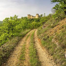 Tony Priestley - Chateau Roussillon 3