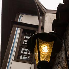 Georgia Mizuleva - Cheerful Golden Light Brightens a Bleak Rainy Day