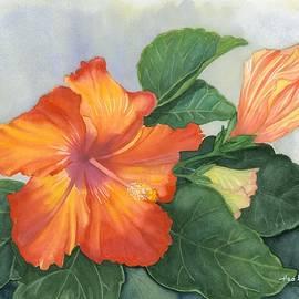 Hao Aiken - Cheerfully Yours - Hibiscus Watercolor