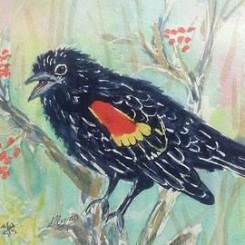 Ellen Levinson - Cheery Redwinged Blackbird