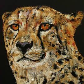 Cheetah - Michael Creese