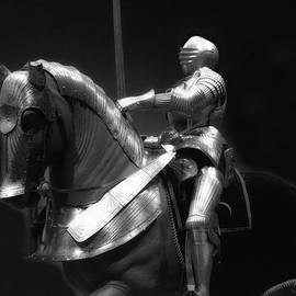 Thomas Woolworth - Chicago Art Institute Armored Knight And Horse BW 01