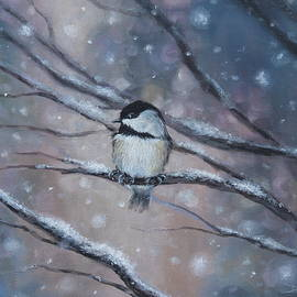 Dorina Zieske - Chickadee First Snow