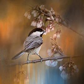 Jai Johnson - Chickadee In The Garden