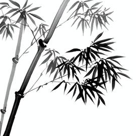 Evelyn Sichrovsky - Chinese Ink Painting of Bamboo