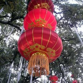 Irina Davis - Chinese Lantern