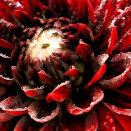 Geraldine Scull - Chocolate Karma Floral