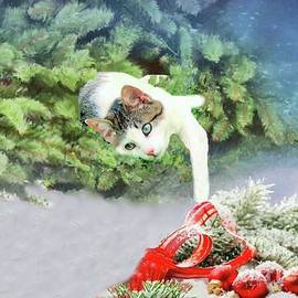 Janette Boyd - Christmas Cat