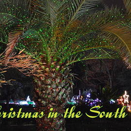 Linda Covino - Christmas in the South