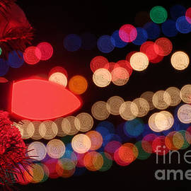Gary Gingrich Galleries - Christmas Lights-2958B