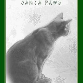 Mother Nature - Christmas Pet Greeting Card - Waiting For Santa Paws