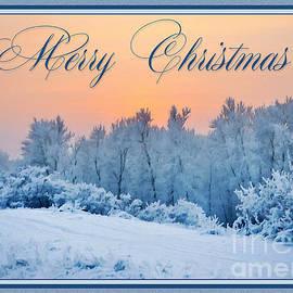 JH Designs - Christmas Snow Painting