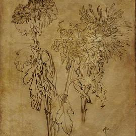 Irina Effa - Chrysanthemums Graphic series 5