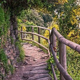 Joan Carroll - Cinque Terre Italy Hiking