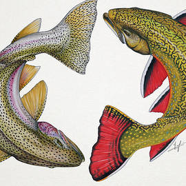 Circling Rainbow and Brook Trout - Nick Laferriere