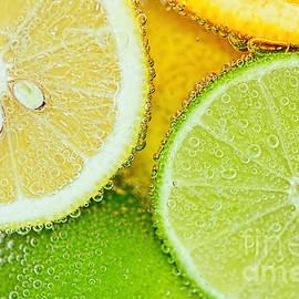 Kaye Menner - Citrus Fresh by Kaye Menner