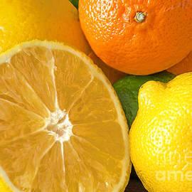 Regina Geoghan - Citrus Still LIfe