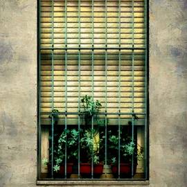 RC deWinter - City Cell