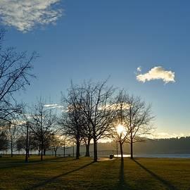 Eoin Carey - City Park Sunset