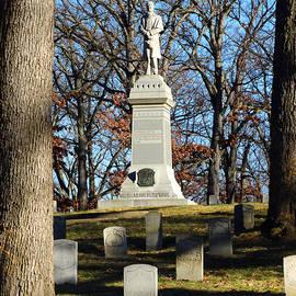 David T Wilkinson - Civil War Statue