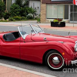 Les Palenik - Classic Jaguar cabriolet
