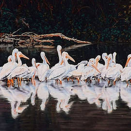 Linda Becker - Clear Lake Pelicans