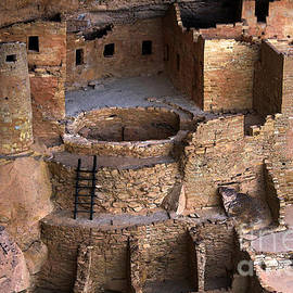 Catherine Sherman - Cliff Palace in Mesa Verde