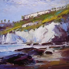 R W Goetting - Cliffs at Pismo Beach XX