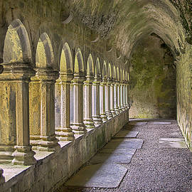 Tony Crehan - Cloisters at Quin