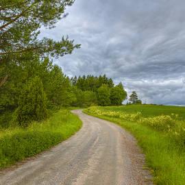 Veikko Suikkanen - Cloudy Day