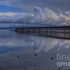 Mitch Shindelbower - Cloudy Morning