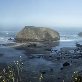 Alan Kepler - Coastal California 1