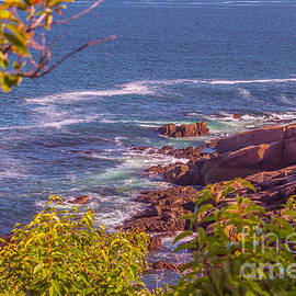 Claudia Mottram - Coastal Maine in Acadia