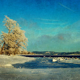 Randi Grace Nilsberg - Coastal Winter Scene