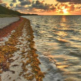 Stephen  Vecchiotti - Coco Plum Beach At Sunrise
