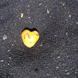 Misti Algeo - Coconut Heart