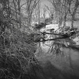 Theresa Campbell - Cold Country Creek