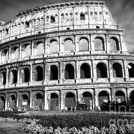 Stefano Senise - Coliseum Rome