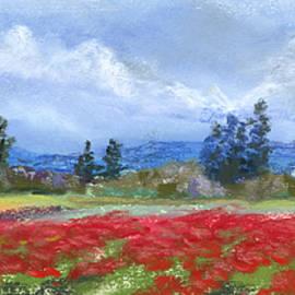 Jan Hardenburger - Color in Abundance