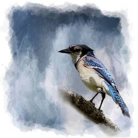 Cyndy Doty - Color Me Blue